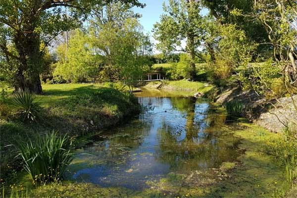 Les Lauriers de la Bastide : locationde salle et parc avec un étang et une cascade